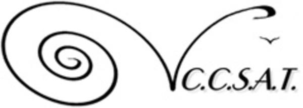 ccsat_logo2.jpg